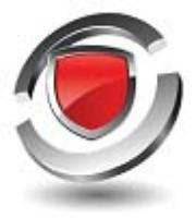 Shield Solutions - Investigations and Protective Services